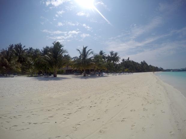 Beach View, Meeru Island Resort & Spa, Maldives © Hailey Edy