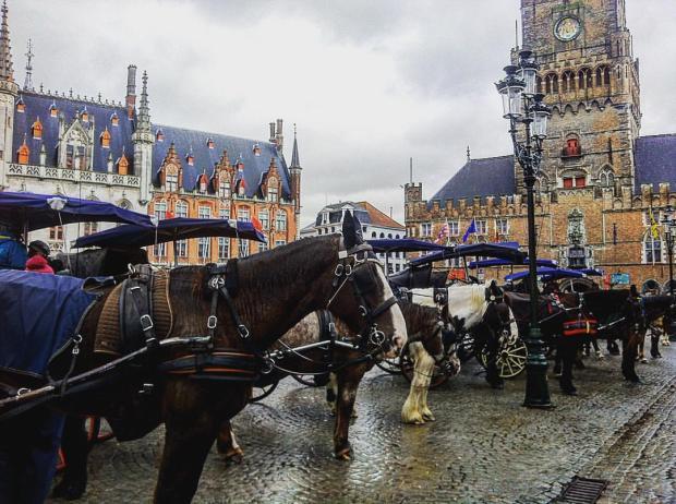 Bruges horse tour © Michele Borrelli